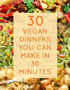 30 vegan meals in under 30 minutes