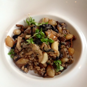 Mushroom spelt risotto at The Grazing Goat, Marylebone