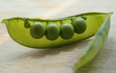 Vegan Pea milk - ripple foods